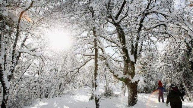 MESAJE DE CRĂCIUN: 40 de urări și felicitări de Sărbători