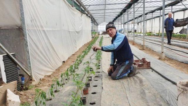 Legea care i-ar putea ajuta cu adevărat pe fermierii români