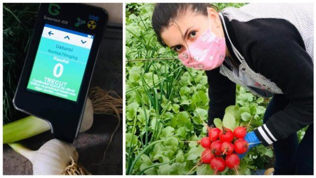 Familia Nicolescu le livrează bucureștenilor legume sănătoase, proaspăt culese din solar și din grădină!
