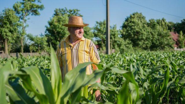 """Deputat: """"Fermierul român este unul dintre cei mai harnici fermieri din UE, dar abia subzistă de la o recoltă la alta"""""""