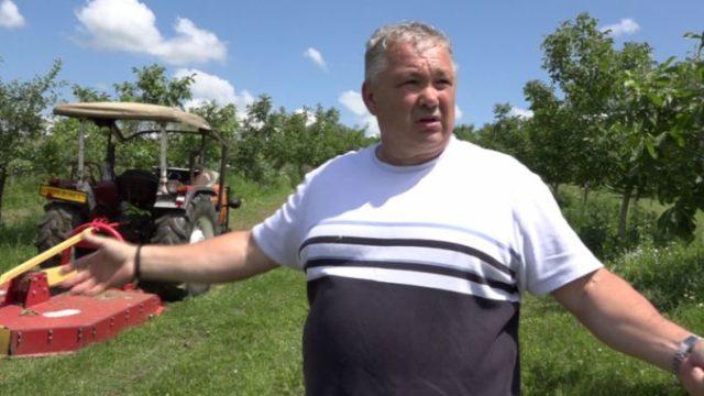 Pomicultorul Sorin Baciu și-a distrus recolta cu tractorul din cauză că nu are unde să vândă fructele