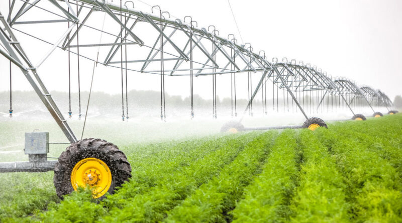 Polonia construiește 19 bazine de acumulare pentru irigarea terenurilor agricole –