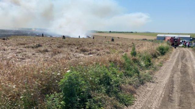 Tânăr fermier, rămas fără grâu după ce terenul său a ars în întregime chiar înainte de recoltat!