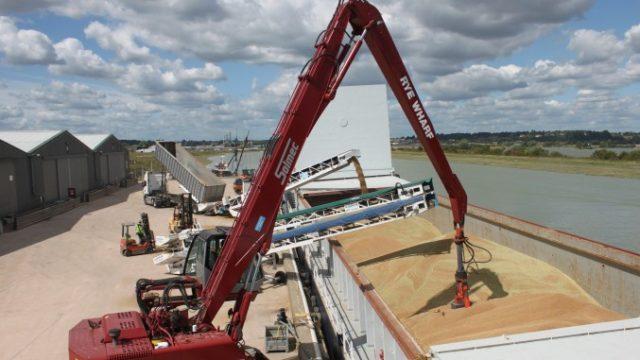Rusia a reluat exporturile de grâu către Algeria. Prima livrare – 30.000 de tone