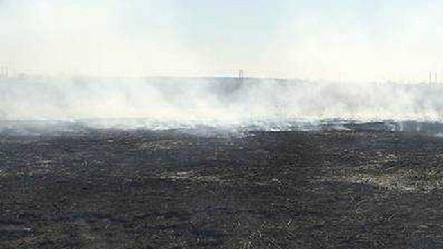 Bărbat amendat cu 10.000 de lei după ce a dat foc la vegetație și flăcările au scăpat de sub control!