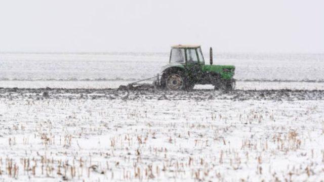 Fermier: Primarul nu vrea să ne înregistreze contractele de arendă, ca să pună el mâna pe terenuri!