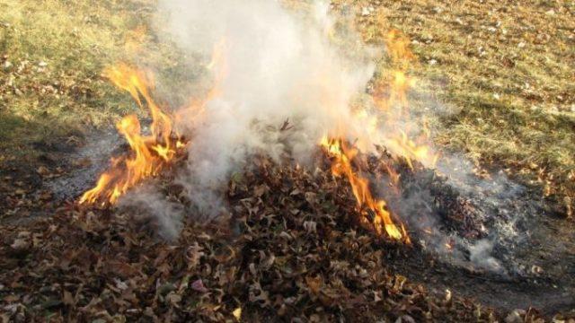 Garda de Mediu: Arderea frunzelor este interzisă din acest an! Amenzile pot ajunge la 20.000 de lei!