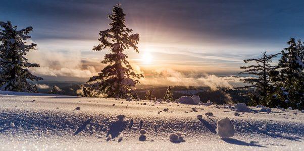 Prognoză meteo | Vremea în săptămâna 1–7 februarie: alternanță primăvară–iarnă!
