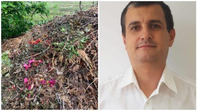 Legea compostului: Primăriile au obligația să organizeze colectarea resturilor vegetale!