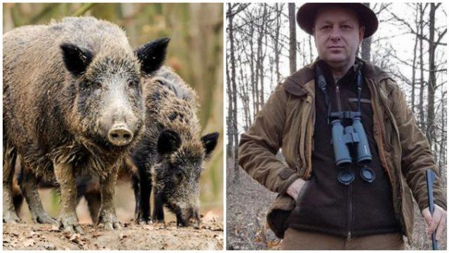 Despăgubiri de 2 milioane de euro pentru uciderea a 2.000 de mistreți de pe un fond de vânătoare!