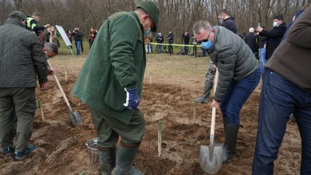 Ministrul Agriculturii a plantat pomi alături de premierul Cîțu și de președintele Iohannis!