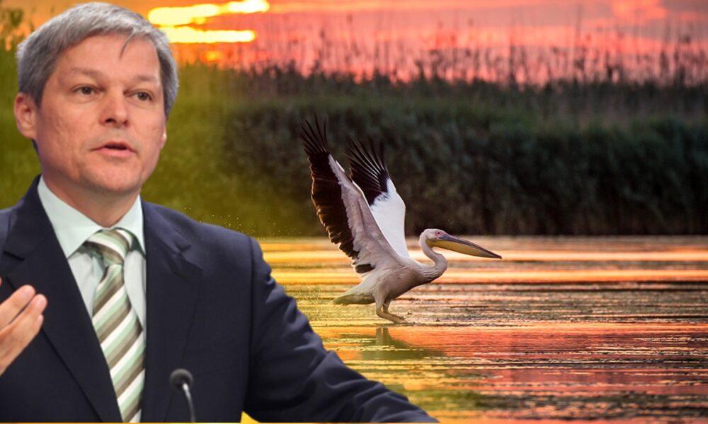 Președintele USR-PLUS, Dacian Cioloș, va numi în curând guvernatorul Deltei Dunării. Preferați un român sau un străin?