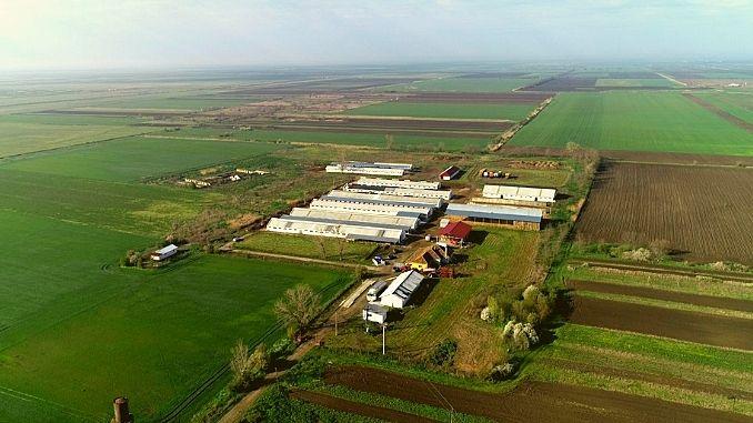 Fermă de vânzare: 800 de vaci de rasă, sute de hectare de teren și o listă mare de utilaje și dotări