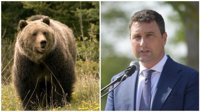 Tanczos Barna: Avem peste 5.000 dosare de pagubă raportate de fermieri şi cetăţeni care au suferit în urma atacurilor de urs