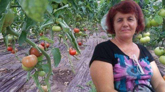 """Mesajul unei țărănci care produce legume românești: """"Rușine să îi fie ministrului Agriculturii"""""""