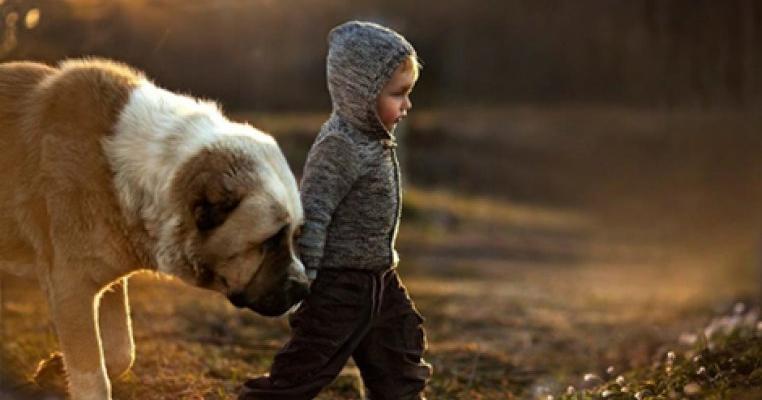Fotografiile emotionante ale unei mamici, infatisand copiii ei alaturi de animalele pe care le iubesc