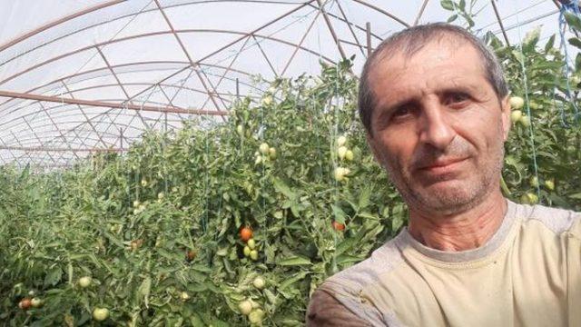 Producător de legume: Samsarii din piețe își pun bunicii și părinții să vândă ca să păcălească lumea!