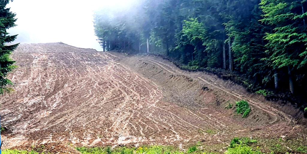 Viitura de pe Ceahlău a venit pe unde s-a defrișat masiv pădurea, nu printre copaci