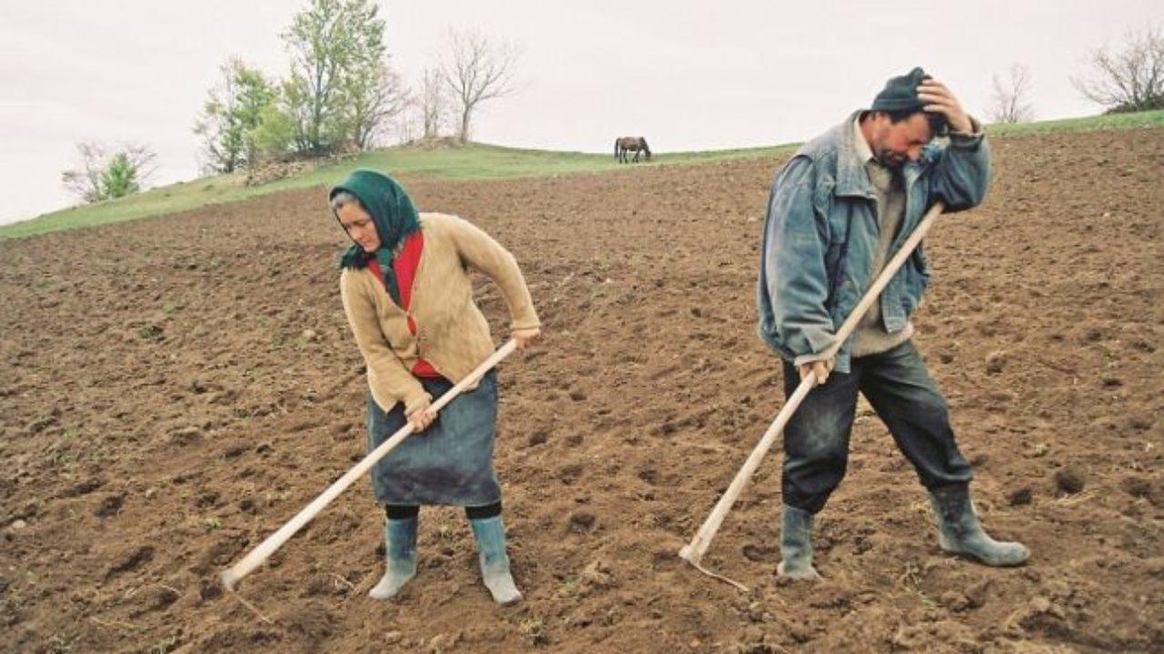 Românii nu joacă golf fiindcă au prea multe găuri în buzunare – 60m.ro