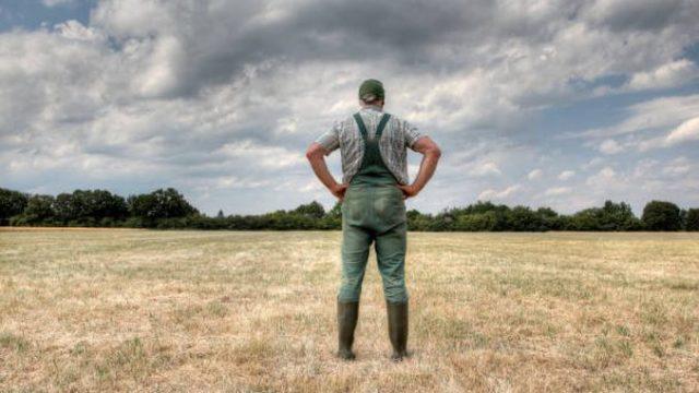Registru nou – obligatoriu pentru fermieri începând de la 1 ianuarie anul viitor!