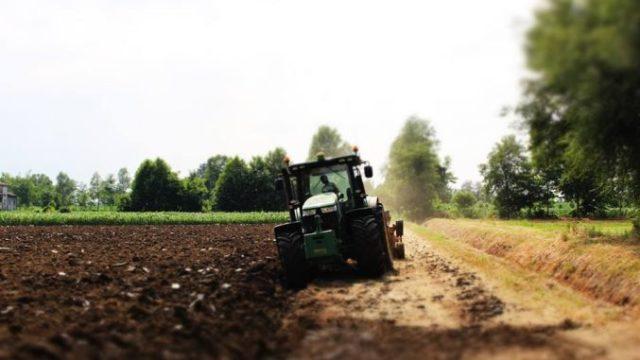 APIA a început de astăzi plățile pentru subvenția așteptată de fermieri!